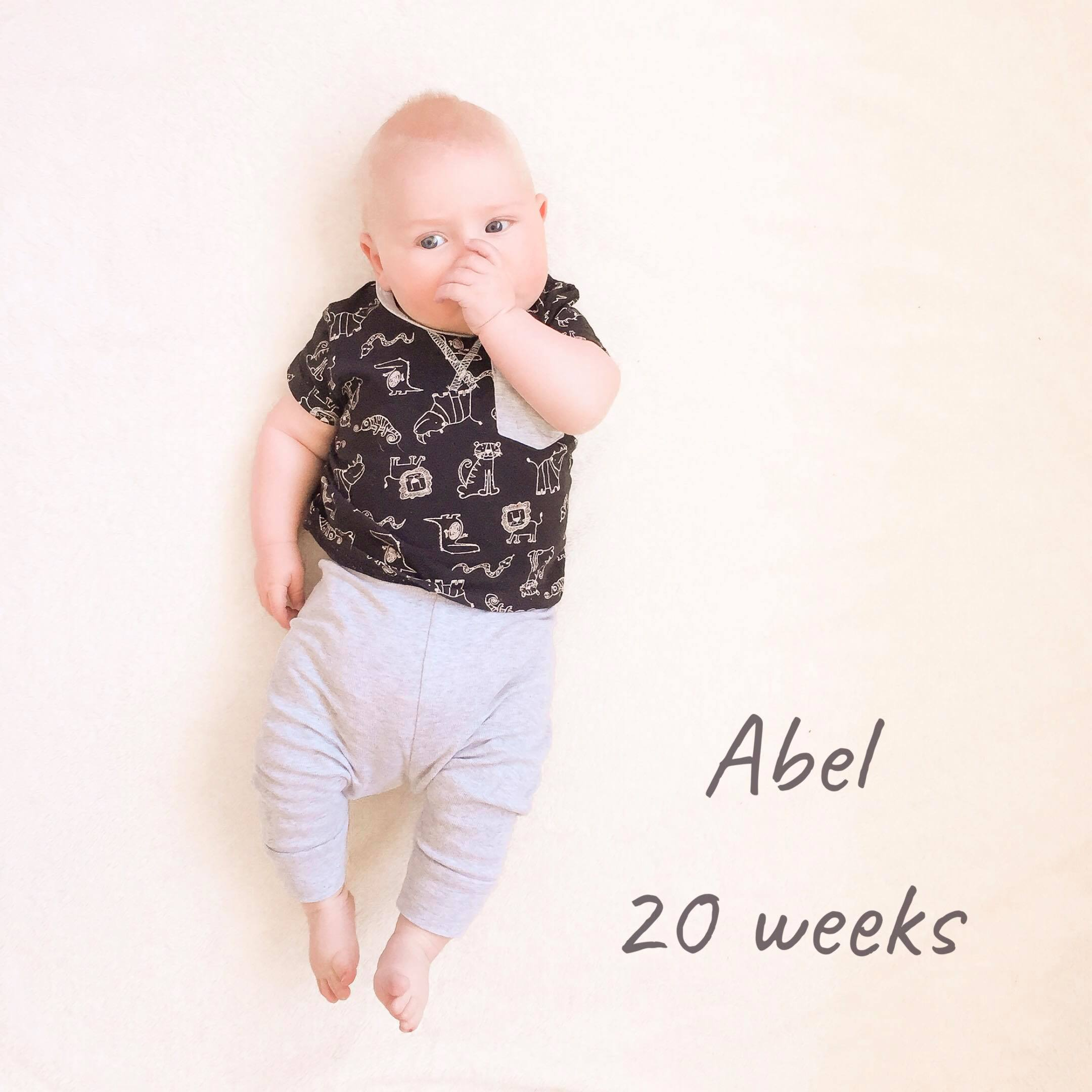 Abel: Twenty Weeks
