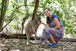 Brisbane and Sunshine Coast: Things to Do